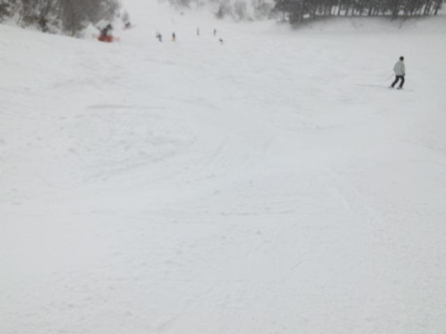 2018年初滑り